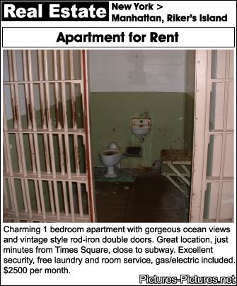 The Funniest Apartments Stories