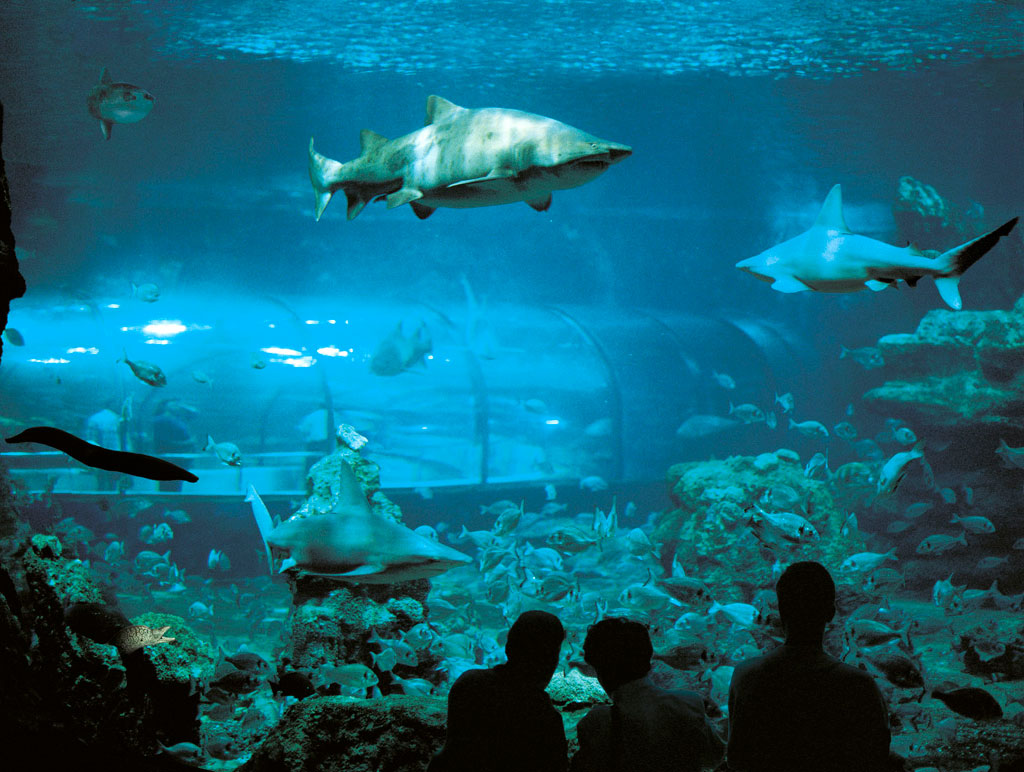 Barcelona 39 S 10 Most Visited Tourist Attractions Friendly