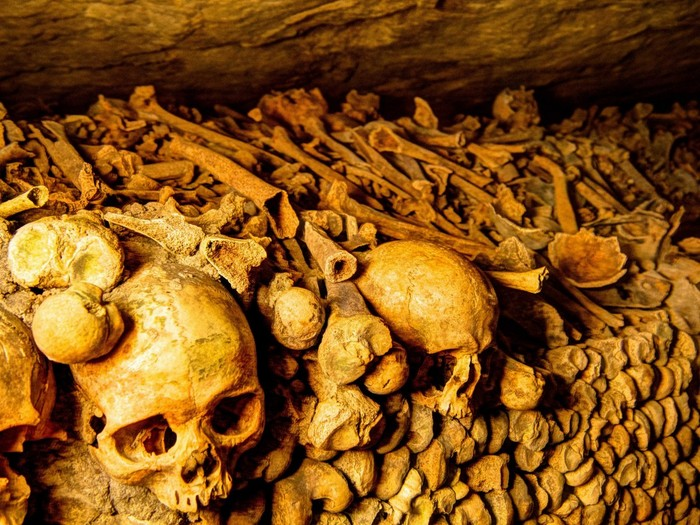 Bones, Paris catacombres
