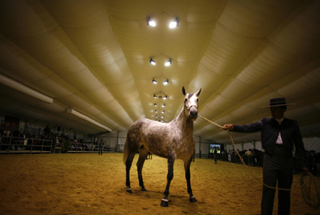 Seville International Horse Show 2011
